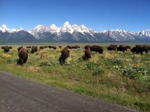 Kelly, WY Teton Mountains
