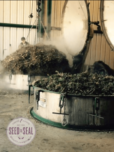 essential oils, purity, distillation technique, young living