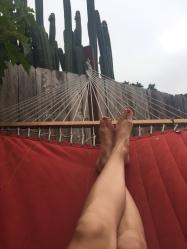 relax hammock unwind cactus nap new mama wellness